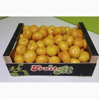 Продаем мандарины оптом, мелким оптом
