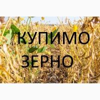 Закуповуємо сою будь-якої якості, гмо и без ГМО