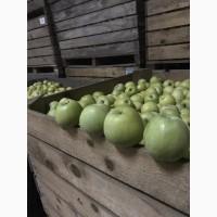 Газованые яблоки с холодильника