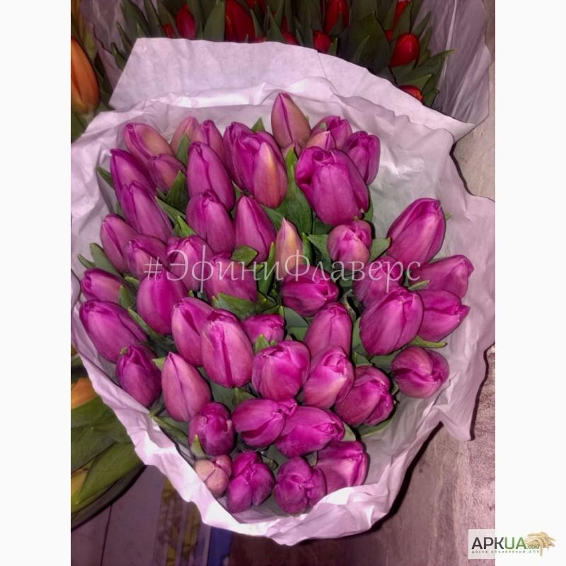 Фото 2. Тюльпаны к 8 марта 2018 из Голландии/тюльпани до 8 березня