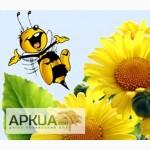 Куплю дорого пчелиный воск