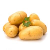 Семянной картофель опт в наличии ривьера семянная цена хорошая, объемы есть