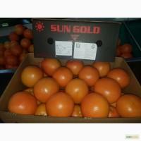 Продаем грейпфрут Киев