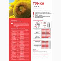 Гібрид соняшнику Тунка