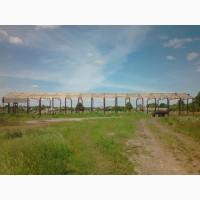 Cтроительство ангаров, складов, зернохранилищь, коровников, сеновалов и ремонтируем старые