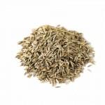 Продам семена Райграс (многолетний, многоукосный)
