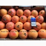 Грейпфрут оптом (Турция). Лучшее предложение в Украине. Звоните
