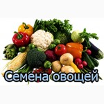 Продам семена овощей(весовые)