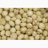 Продам грибы шампиньоны маринованные