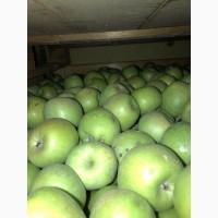 Продаємо яблука