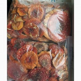 Продам сушені гриби мухомори