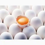 Продам яйца куриные столовые в Харькове со склада или с доставкой. Опт розница