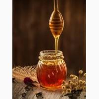 Куплю мед оптом без Антибиотиков