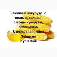 Закупаем кукурузу, пшеницу, ячмень, овес, рожь, тритикале