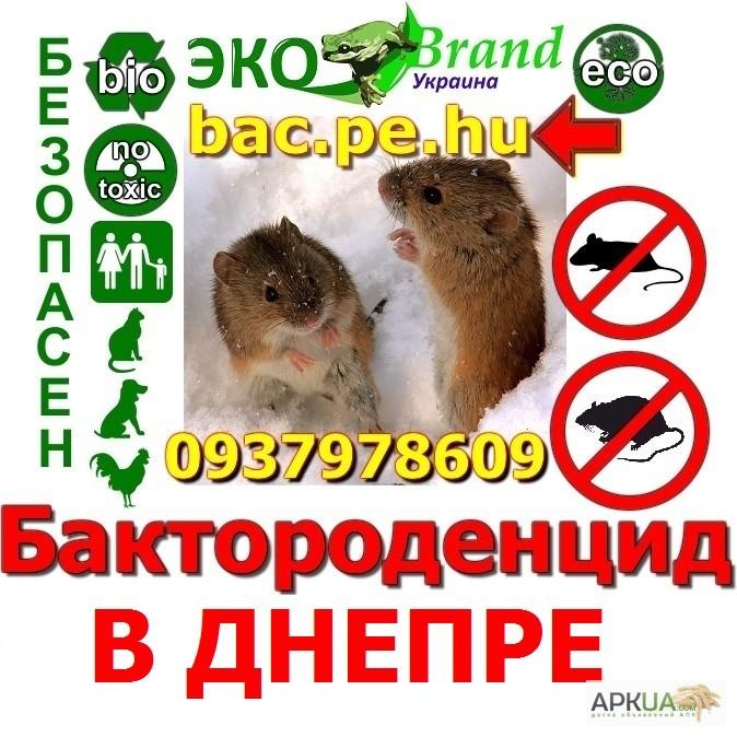 знакомства в магдалиновке днепропетровской области