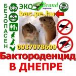 Бактороденцид 093, 797, 86, 09 в Днепропетровской области и районе апостолово васильковке