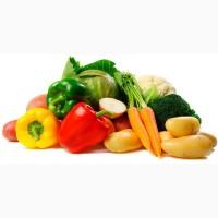 Овощи оптом, Дешево