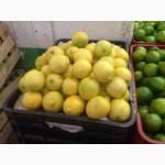 Мексиканский лимон