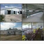 Реконструкція корівників свинарників, будівництво корівників, свинарників