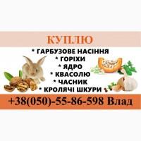 Гарбузове насіння/горіхи/ ядро/ фасоль/ кролячі шкурки/ пір#039;я