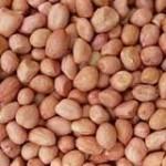 Продам АРАХИС не бланшированный, 60/70. Урожай 2016 года. Аргентина, Индия