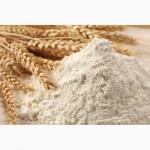 Мука пшеничная. FOB, CIF.Высший сорт, 1 сорт экспорт
