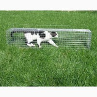 Живоловушка. Клетка живоловка на кота. Ловушка для кошки безопасная