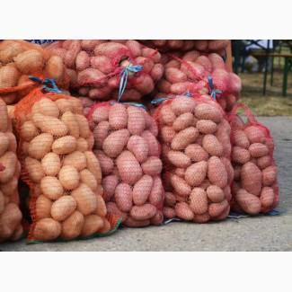Продам картофель с доставкой по Киеву