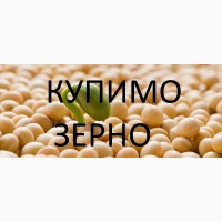 Закуповуємо сою якість відповідно до Держстандарту по Закарпатській області