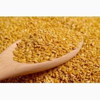 Куплю лен золотистый у производителей по всей Украине