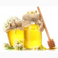 Компания экспортер закупает мед