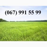 Куплю землю сільськогосподарського призначення