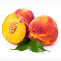 Продам персик оптом з власних садів у Миколаївській області