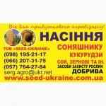 Предлагаем купить семена подсолнечника
