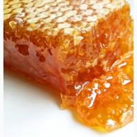 Куплю оптом мёд, Днепр