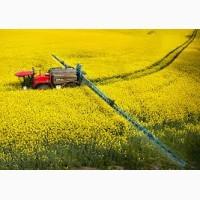 Пшеница, подсолнечник, соя, рапс, кукуруза. ЗАКУПКА