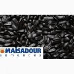 Продам насіння гібридів соняшника МАЇSADOUR