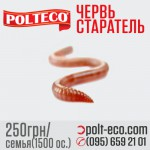 Червь Старатель для производства биогумуса, семья ( 1500 ос.)