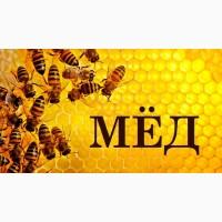 Куплю мед, который не проходит, по анализу