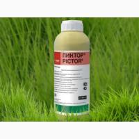 Фунгицид «Пиктор» - защита растения и повышение урожайности