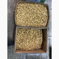 Оптовая продажа грецкого ореха
