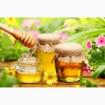 Продам мед рапс і акацію