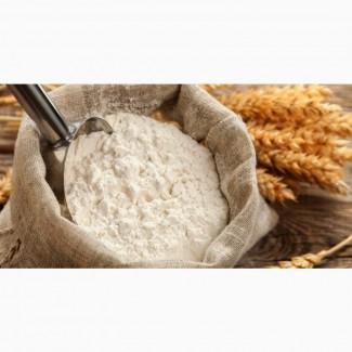 Пшеничная мука в/с, первый сорт куплю