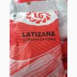 Продам гібрид кукурудзи ЛАТІЗАНА