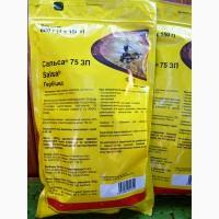 Сальса системный гербицид для обработки всходов рапса, подсолнечника