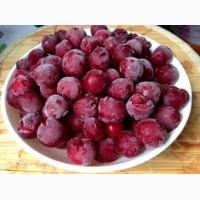 Заключим договор на оптовую поставку вишни