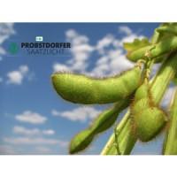Семена сои Сигалия от Пробстдорфер, 1 репродукция