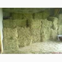 Продам сено луговое тюкованое