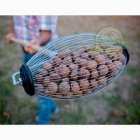 Ролл для сбора грецкого ореха