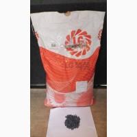 Семена подсолнечника Limagrain 55.80 (новая Тунка), распродажа 2016 года урожая